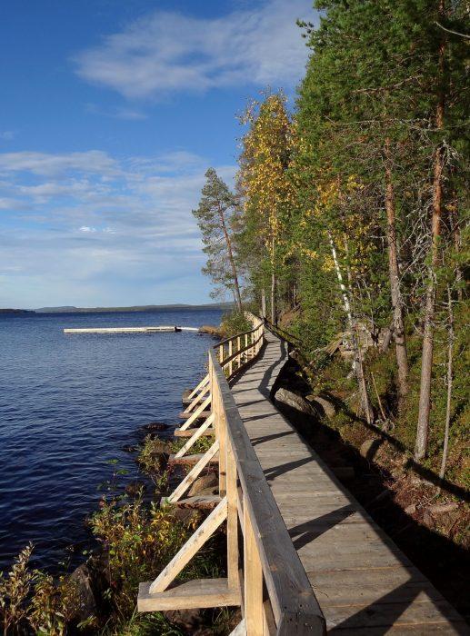 orhinselänniemi sandbar in miekojärvi an arctic circle lake in