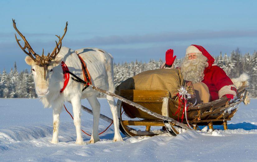 Les Renne Du Pere Noel.Pello Le Pays Des Rennes Du Père Noël En Laponie En