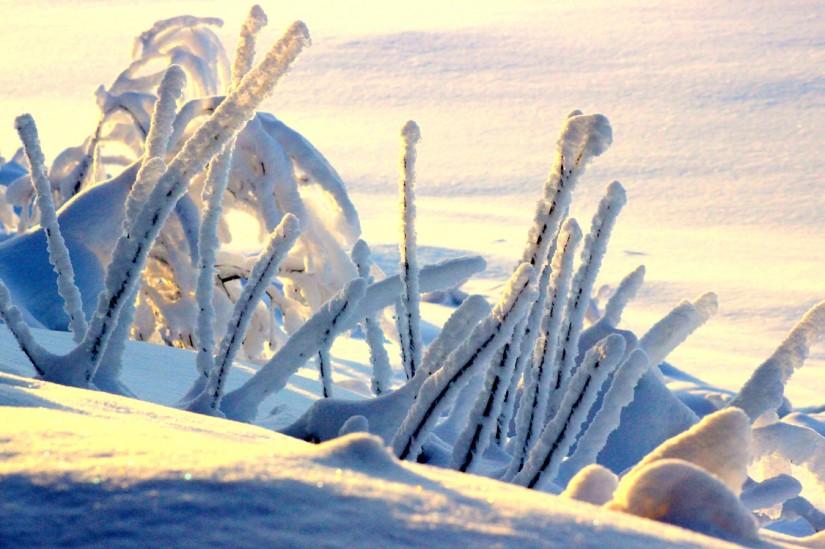 Lumi Laukut Suomi : Lumi on saapunut tornionlaaksoon l?nsi lappiin travel